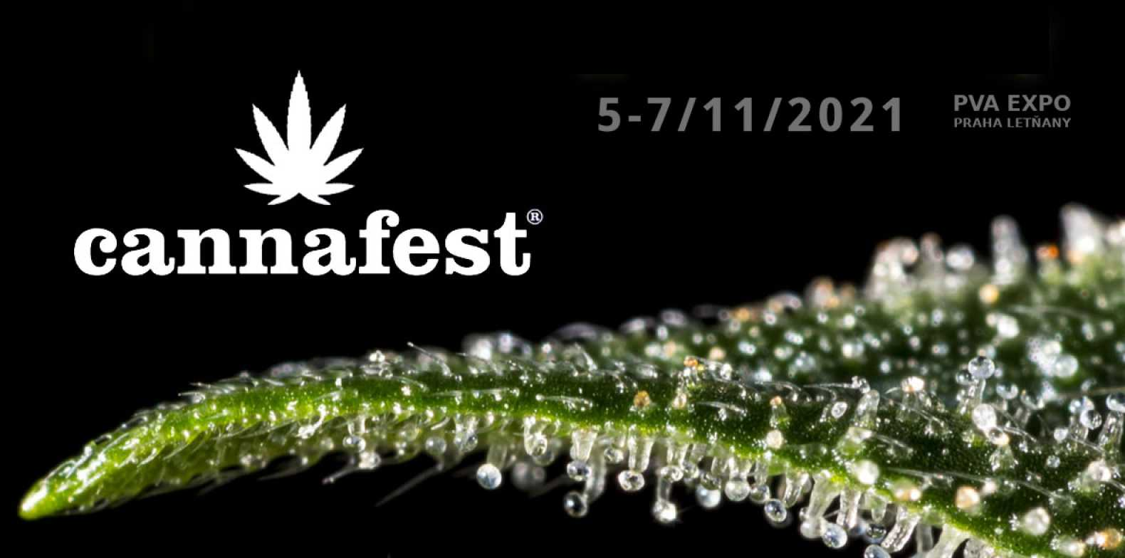 """Featured image for """"Nukaseeds and Cannafest – new seedbank is coming"""""""