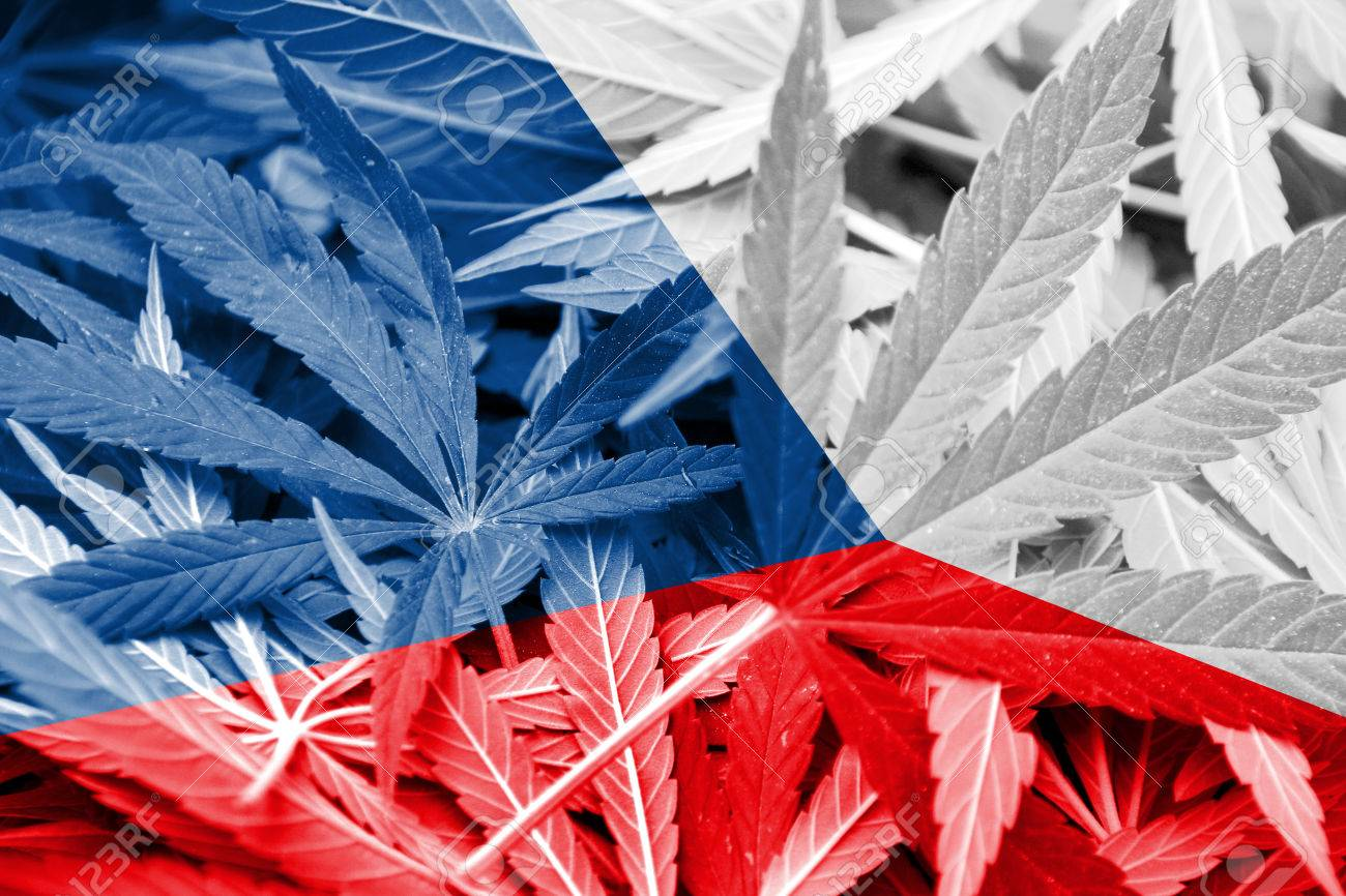 """Featured image for """"Medical cannabis in the Czech Republic has the green light"""""""